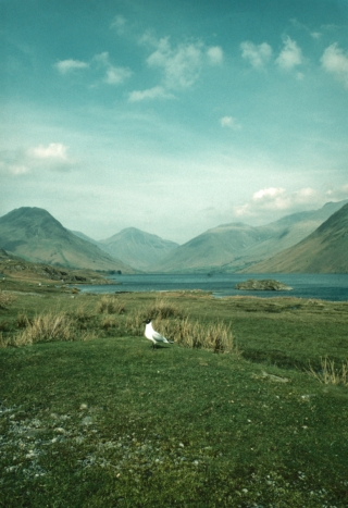 Wast Water. 3.