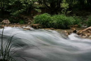 Still Grass/Rushing Stream, Greece, '00.