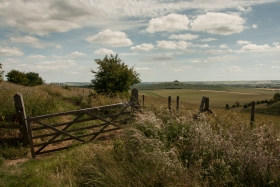 Pewsey Downs, Wilts 5.
