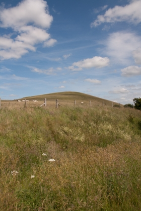 Pewsey Downs, Wilts 4.